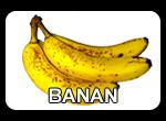 banan opis i właściwości